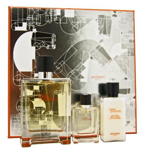 Hermes-TERRE-DHERMES-Eau-de-Toilette-Zerstuber-100-ml-0