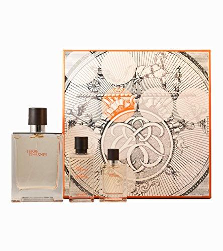 Hermes-Terre-DHermes-hommemen-Geschenkset-Eau-de-Toilette-100-ml-plus-Eau-de-Toilette-125-ml-plus-After-Shave-Lotion-40-ml-1er-Pack-1-x-1-Stck-0
